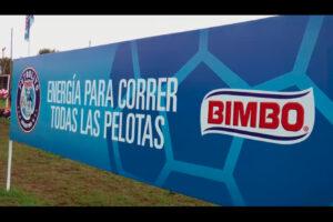 Bimbo Futbolito