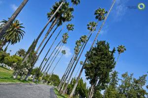 Los Ángeles | EEUU